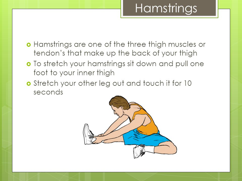 Hamstrings  Hamstrings are one of the three thigh muscles or tendon's that make up the back of your thigh  To stretch your hamstrings sit down and pull one foot to your inner thigh  Stretch your other leg out and touch it for 10 seconds