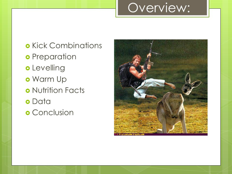 Overview:  Kick Combinations  Preparation  Levelling  Warm Up  Nutrition Facts  Data  Conclusion