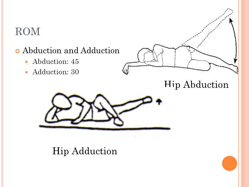 ROM Abduction and Adduction Abduction: 45 Adduction: 30 Hip Abduction Hip Adduction