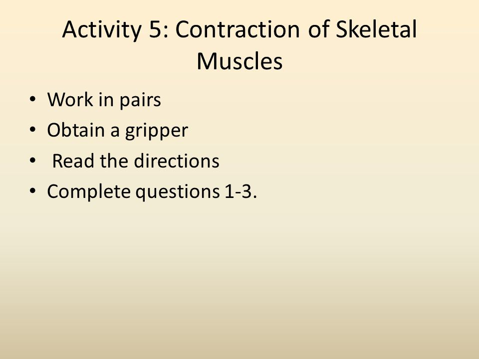 Activity 5: Contraction of Skeletal Muscles Work in pairs Obtain a gripper Read the directions Complete questions 1-3.