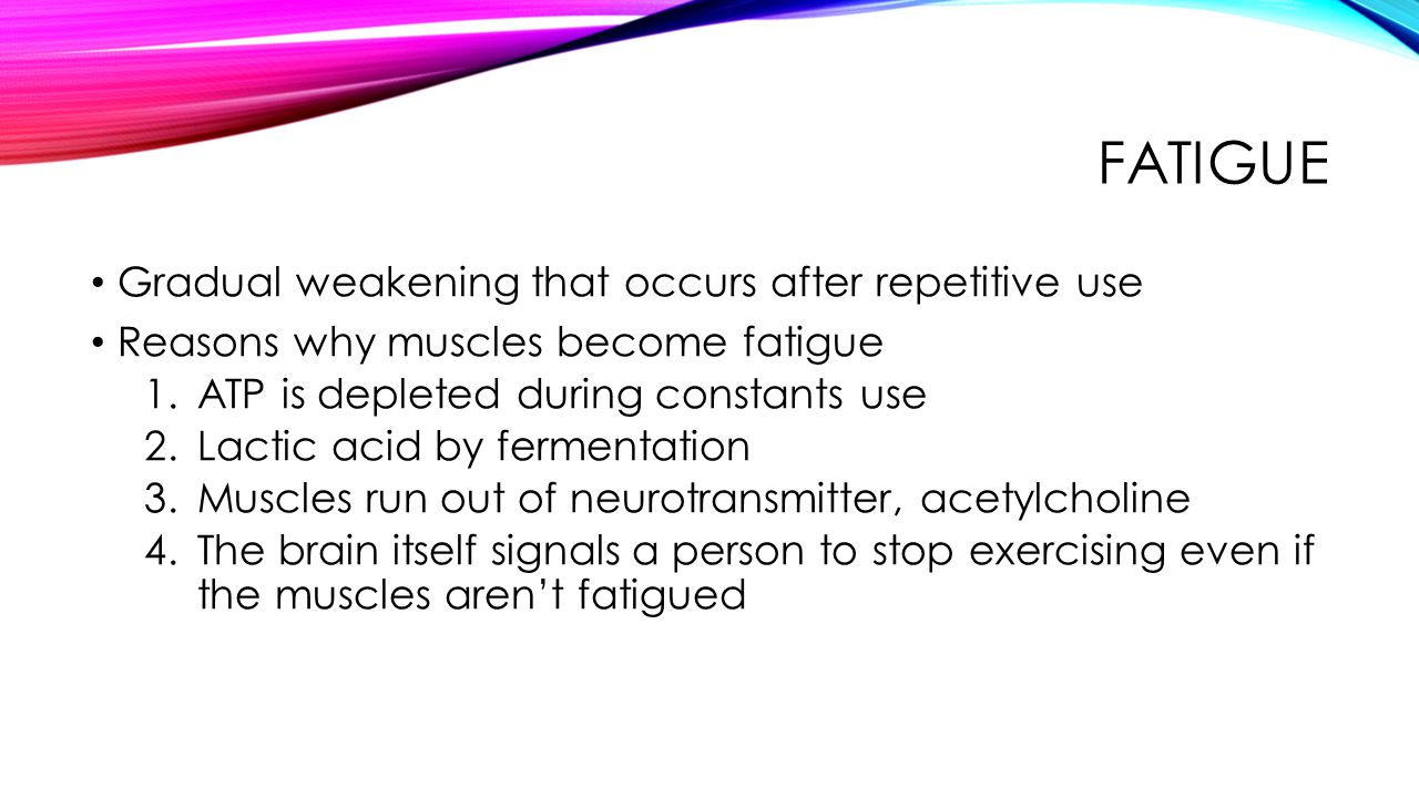 FATIGUE Gradual weakening that occurs after repetitive use Reasons why muscles become fatigue 1.ATP is depleted during constants use 2.Lactic acid by