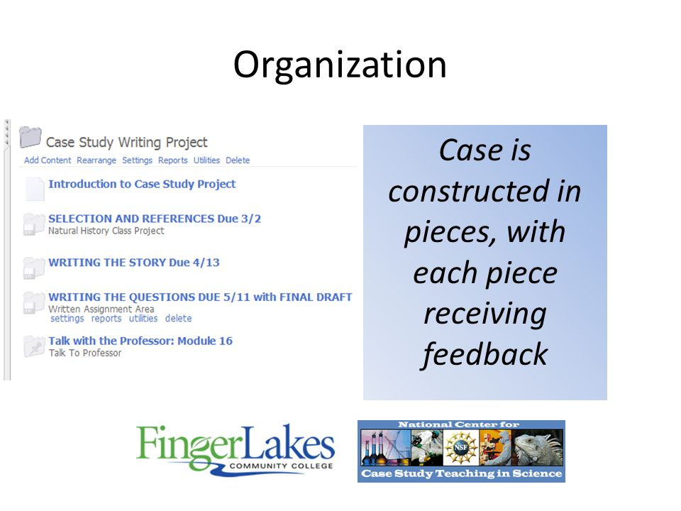 Organization Case is constructed in pieces, with each piece receiving feedback