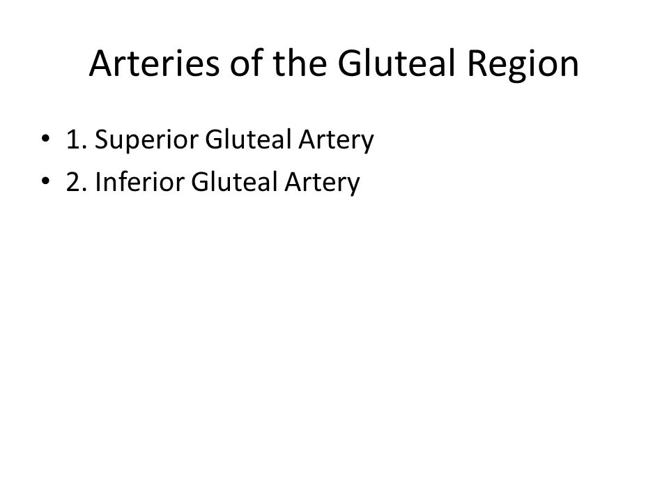 Arteries of the Gluteal Region 1. Superior Gluteal Artery 2. Inferior Gluteal Artery