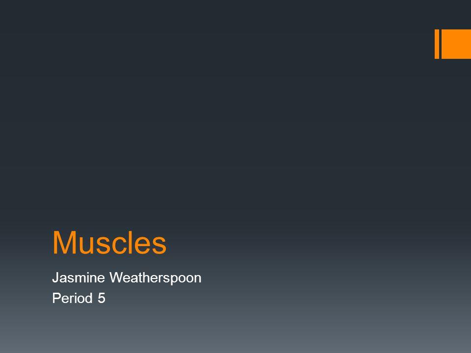 Muscles Jasmine Weatherspoon Period 5