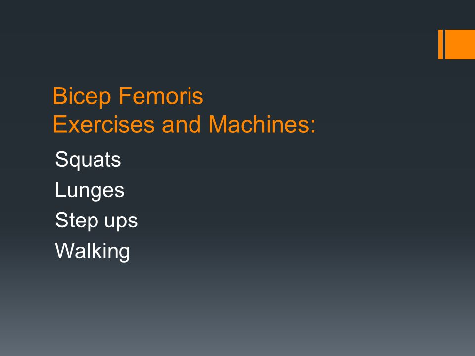Bicep Femoris Exercises and Machines: Squats Lunges Step ups Walking