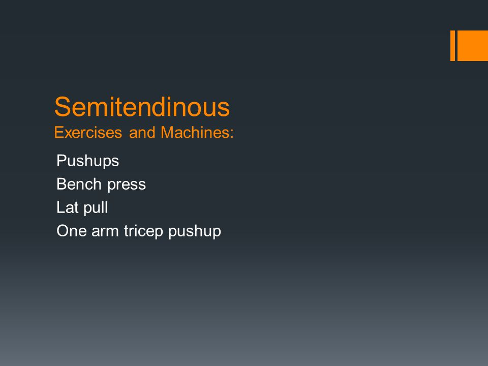 Semitendinous Exercises and Machines: Pushups Bench press Lat pull One arm tricep pushup