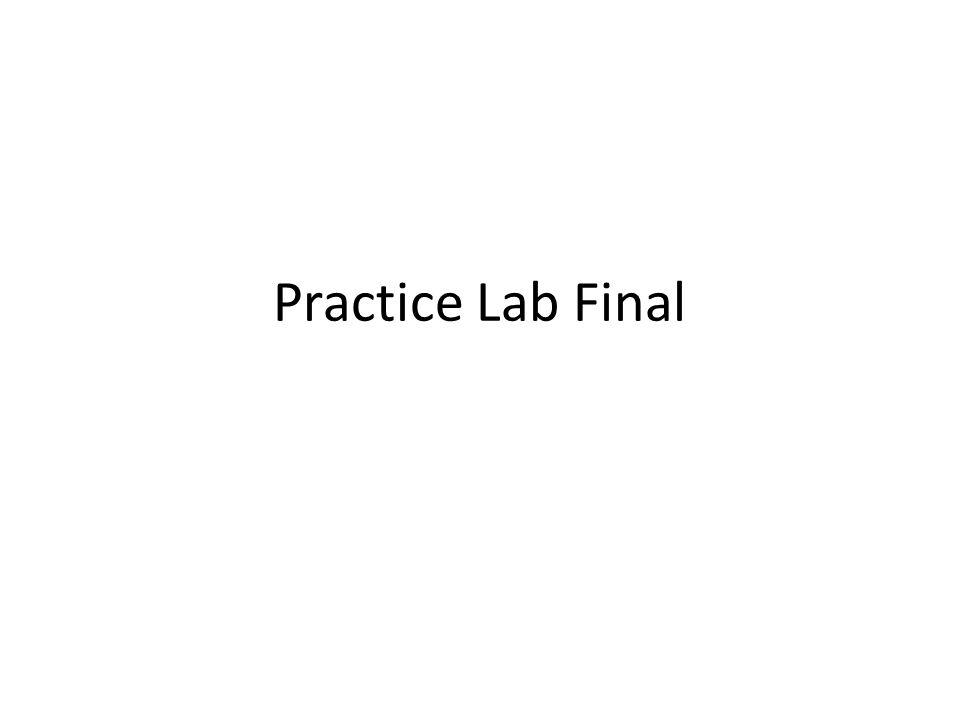 Practice Lab Final