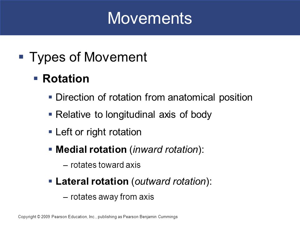 Copyright © 2009 Pearson Education, Inc., publishing as Pearson Benjamin Cummings Movements  Types of Movement  Rotation  Direction of rotation fro