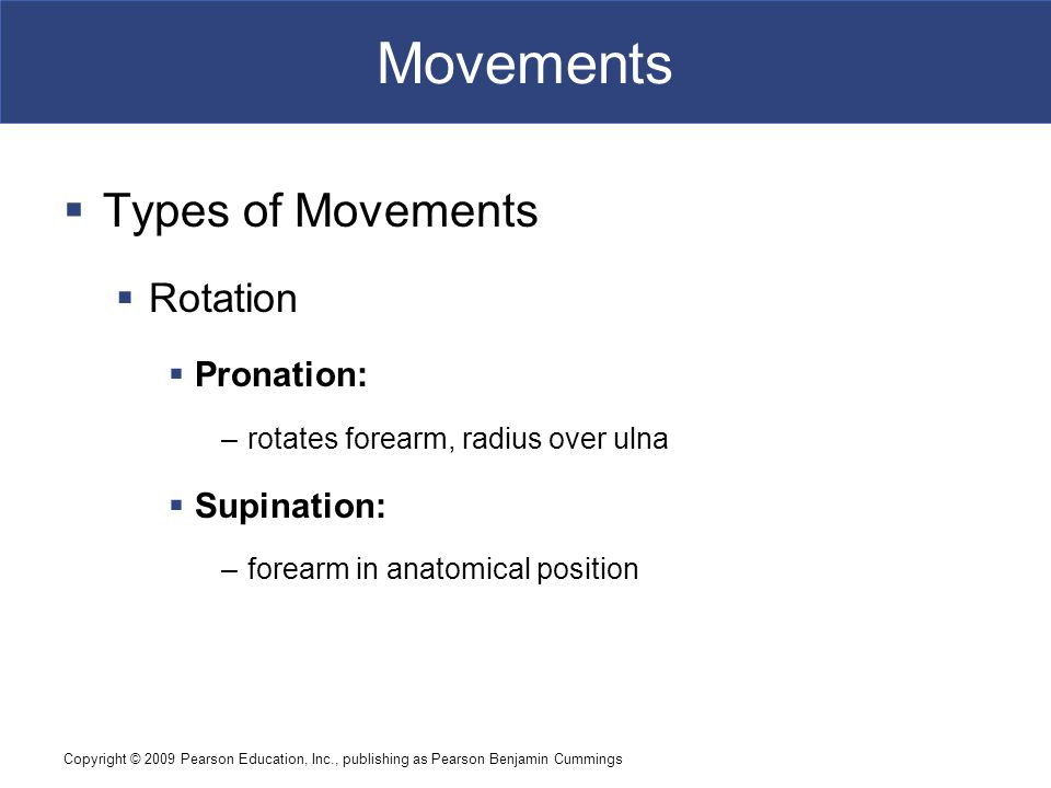 Copyright © 2009 Pearson Education, Inc., publishing as Pearson Benjamin Cummings Movements  Types of Movements  Rotation  Pronation: –rotates fore