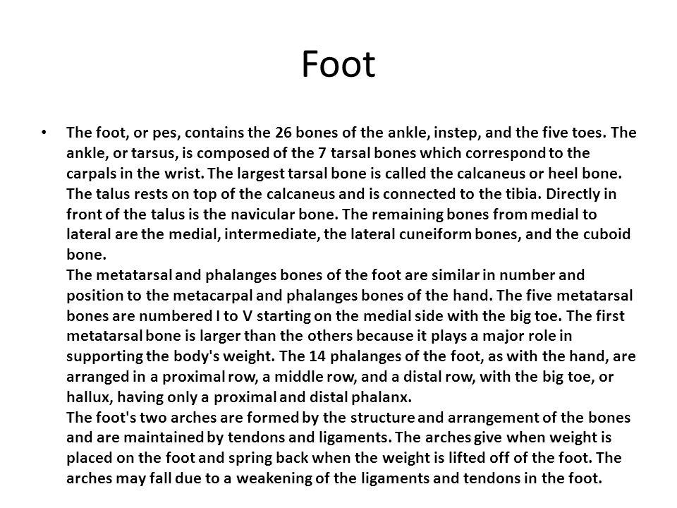 Foot Cont.