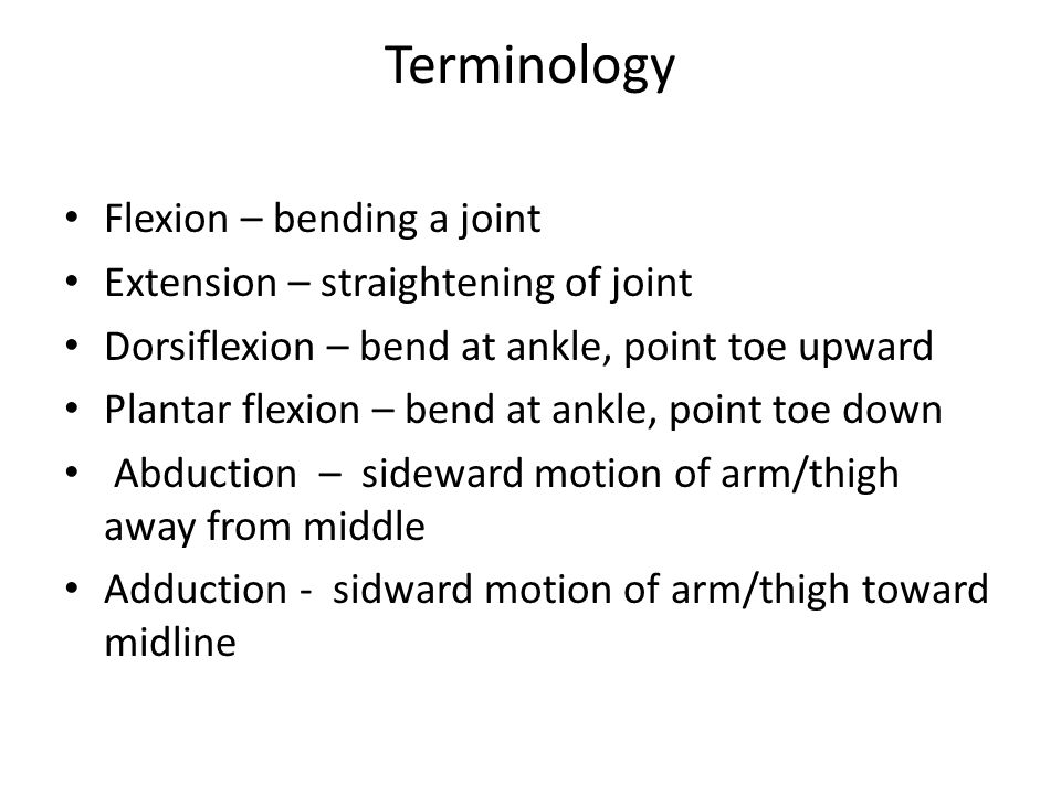Terminology Flexion – bending a joint Extension – straightening of joint Dorsiflexion – bend at ankle, point toe upward Plantar flexion – bend at ankle, point toe down Abduction – sideward motion of arm/thigh away from middle Adduction - sidward motion of arm/thigh toward midline