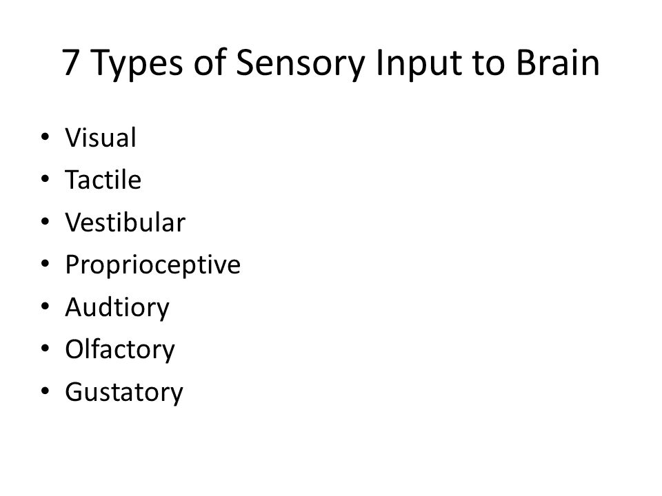 7 Types of Sensory Input to Brain Visual Tactile Vestibular Proprioceptive Audtiory Olfactory Gustatory