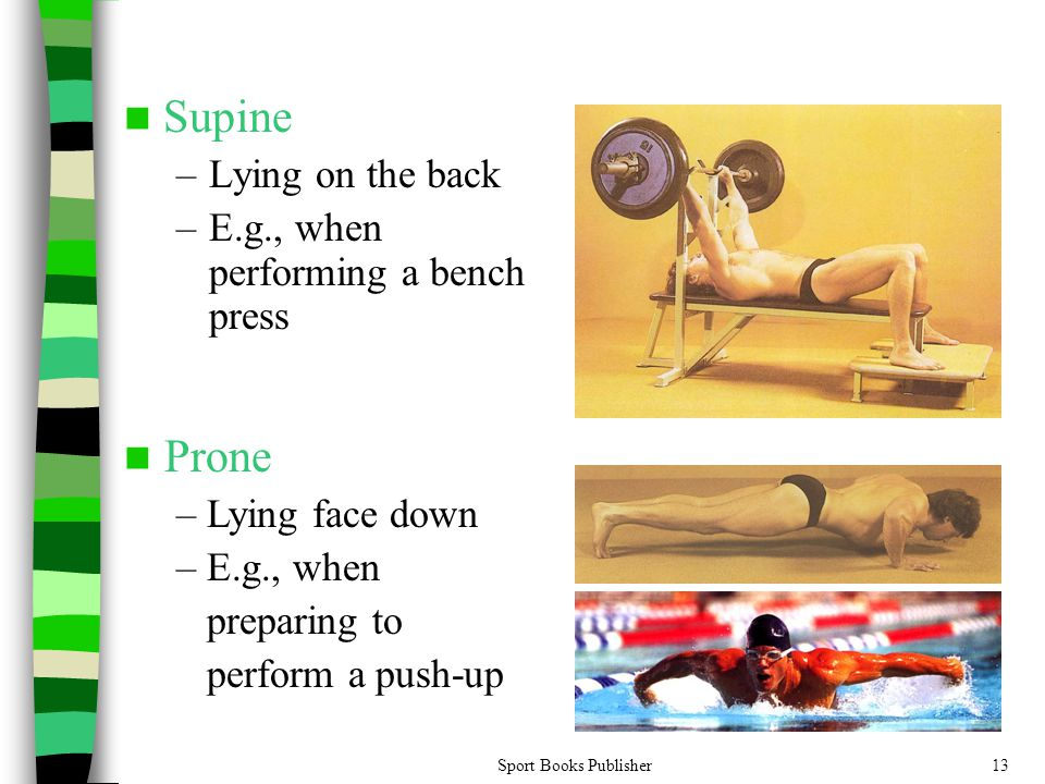 Sport Books Publisher13 Supine –Lying on the back –E.g., when performing a bench press Prone – Lying face down – E.g., when preparing to perform a push-up