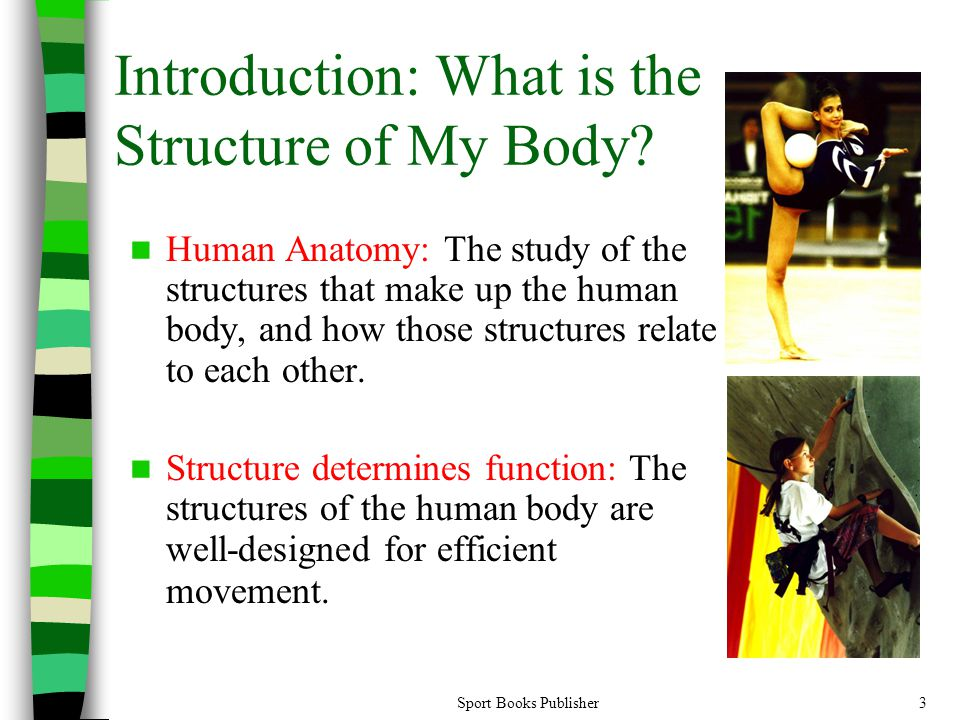 Sport Books Publisher3 Introduction: What is the Structure of My Body.