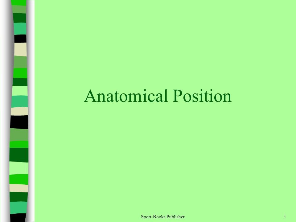Sport Books Publisher5 Anatomical Position