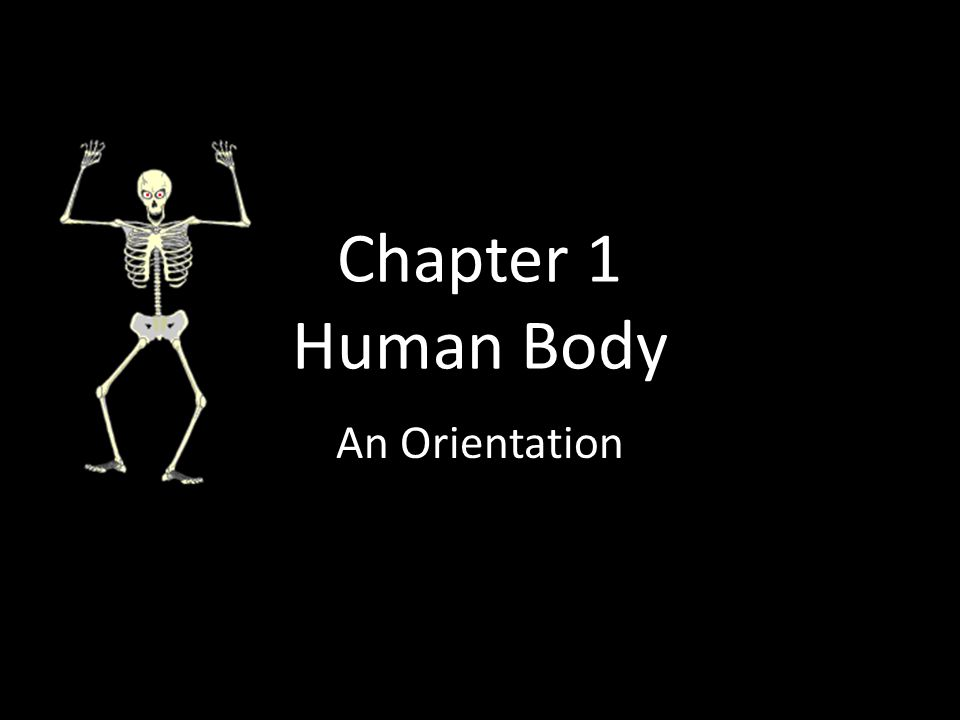 What is Anatomy and Physiology Anatomy : The study of the structures of body parts and their relationship to one another.