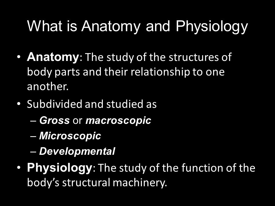 Gross or Macroscopic Anatomy Gross anatomy is studied using both invasive and noninvasive methods with the goal of obtaining information about the macroscopic structure and organization of organs and organ systems.