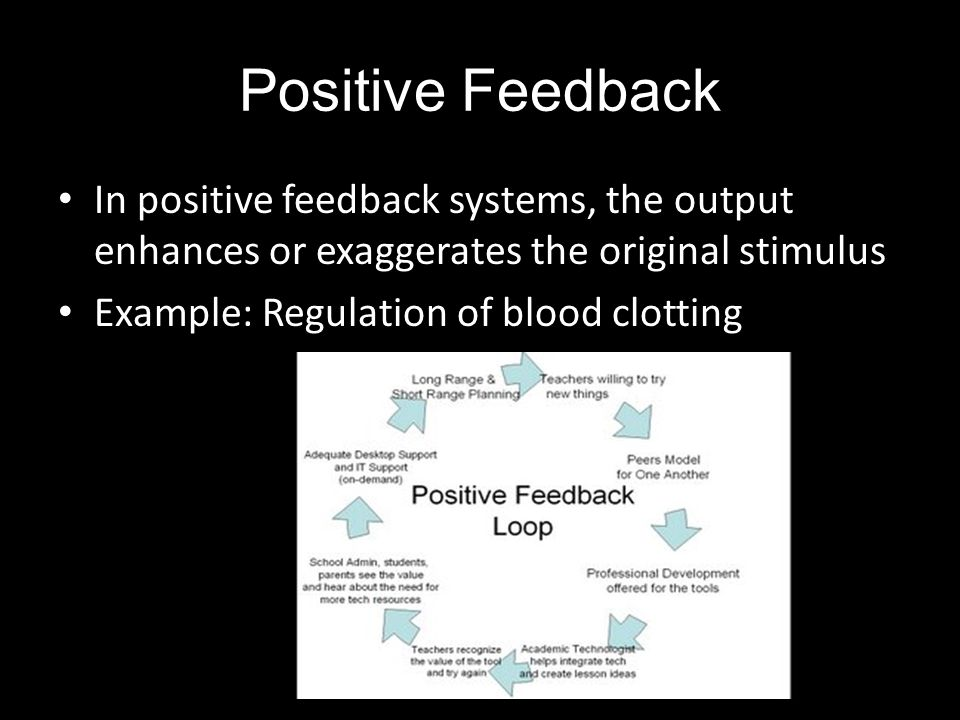 Positive Feedback In positive feedback systems, the output enhances or exaggerates the original stimulus Example: Regulation of blood clotting