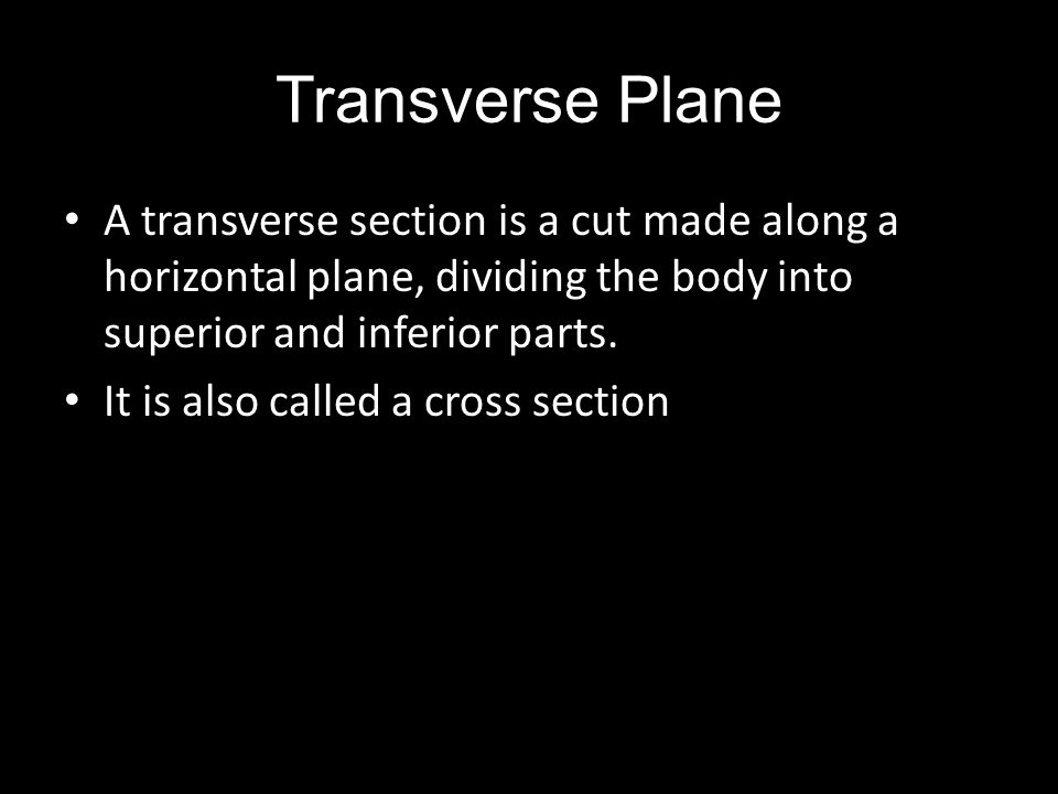 Transverse Plane A transverse section is a cut made along a horizontal plane, dividing the body into superior and inferior parts. It is also called a