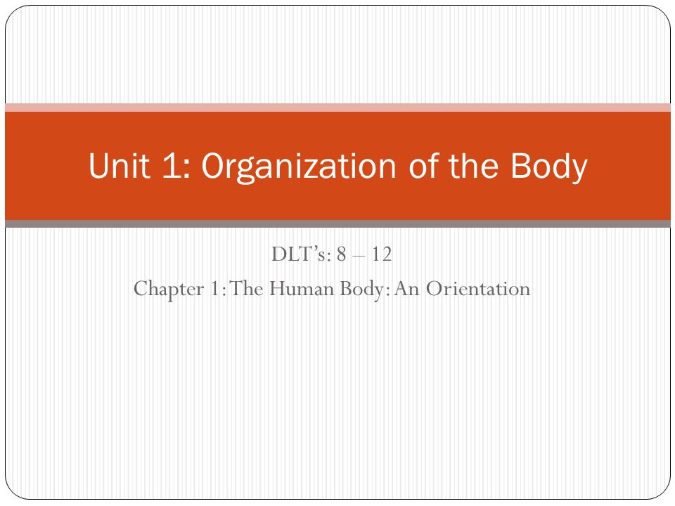 DLT's: 8 – 12 Chapter 1: The Human Body: An Orientation Unit 1: Organization of the Body