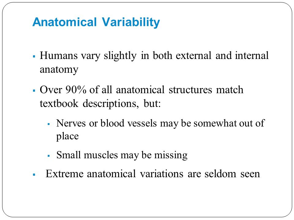 Anatomical Variability  Humans vary slightly in both external and internal anatomy  Over 90% of all anatomical structures match textbook description