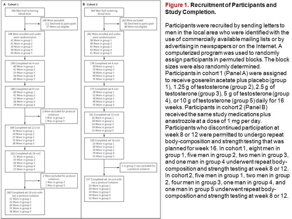 Figure 1. Recruitment of Participants and Study Completion.