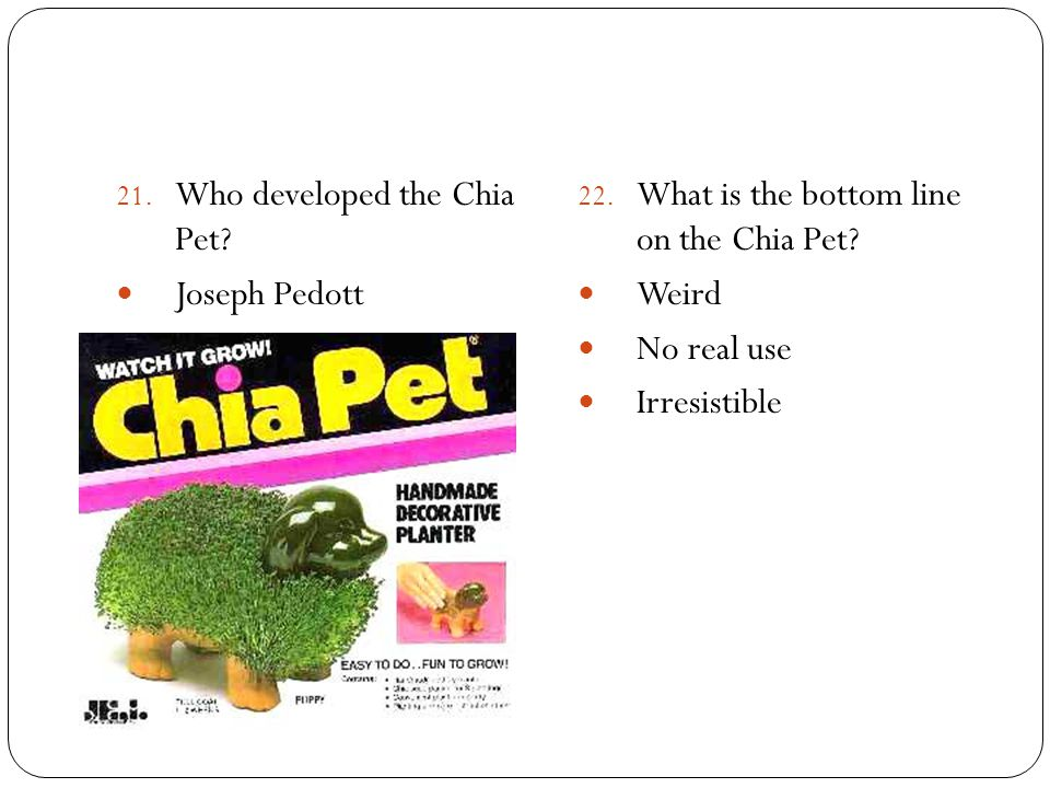 21. Who developed the Chia Pet? Joseph Pedott 22. What is the bottom line on the Chia Pet? Weird No real use Irresistible