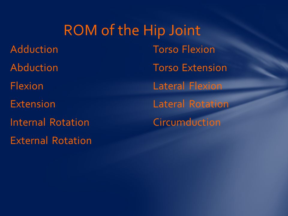ROM of the Hip Joint Adduction Abduction Flexion Extension Internal Rotation External Rotation Torso Flexion Torso Extension Lateral Flexion Lateral Rotation Circumduction