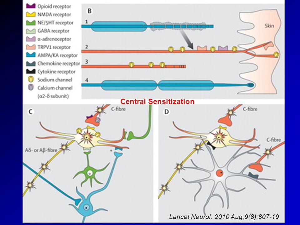 Neuropathic Pain Mechanisms Central Sensitization Lancet Neurol. 2010 Aug;9(8):807-19