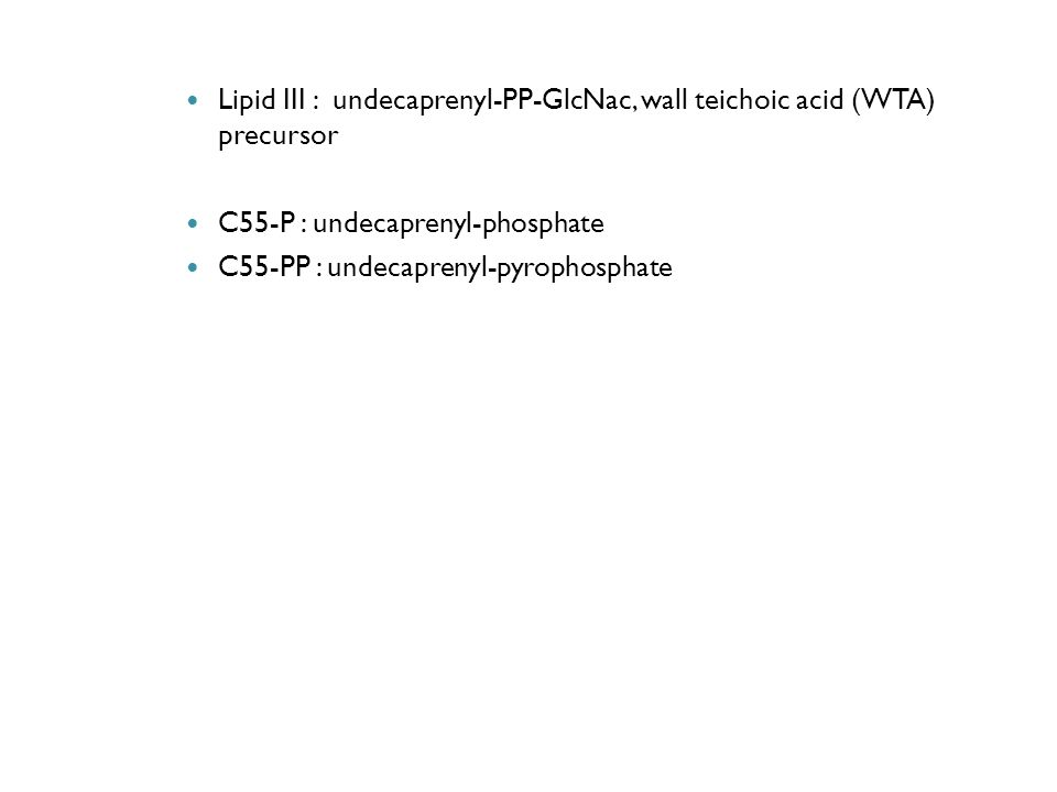 Lipid III : undecaprenyl-PP-GlcNac, wall teichoic acid (WTA) precursor C55-P : undecaprenyl-phosphate C55-PP : undecaprenyl-pyrophosphate