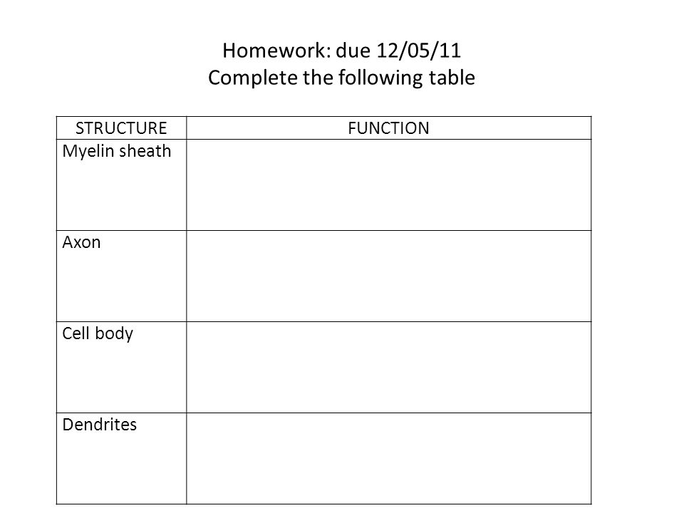 Homework: due 12/05/11 Complete the following table STRUCTUREFUNCTION Myelin sheath Axon Cell body Dendrites