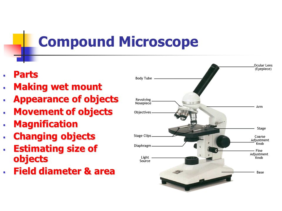 Compound Microscope  Parts  Making wet mount  Appearance of objects  Movement of objects  Magnification  Changing objects  Estimating size of o