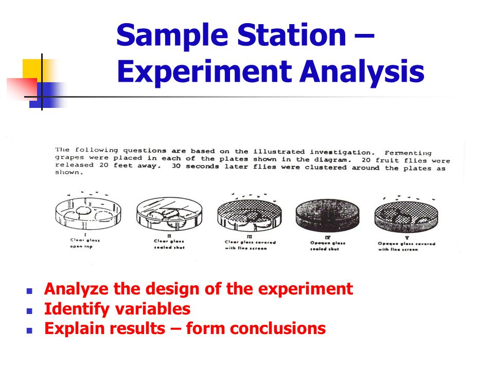 Sample Station – Experiment Analysis Analyze the design of the experiment Identify variables Explain results – form conclusions