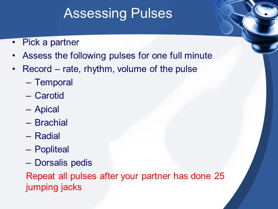 Assessing Pulses Pick a partner Assess the following pulses for one full minute Record – rate, rhythm, volume of the pulse –Temporal –Carotid –Apical –Brachial –Radial –Popliteal –Dorsalis pedis Repeat all pulses after your partner has done 25 jumping jacks