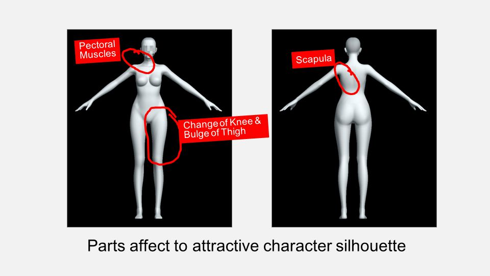 Parts affect to attractive character silhouette Change of Knee & Bulge of Thigh Pectoral Muscles Scapula
