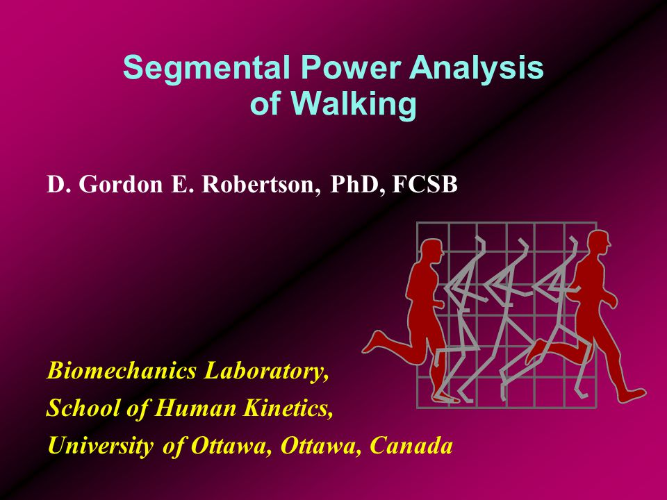 Segmental Power Analysis of Walking D. Gordon E. Robertson, PhD, FCSB Biomechanics Laboratory, School of Human Kinetics, University of Ottawa, Ottawa,