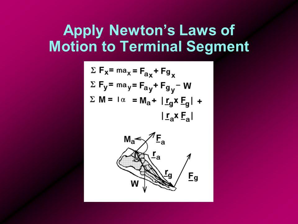 Apply Newton's Laws of Motion to Terminal Segment