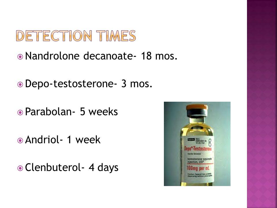  Nandrolone decanoate- 18 mos.  Depo-testosterone- 3 mos.  Parabolan- 5 weeks  Andriol- 1 week  Clenbuterol- 4 days