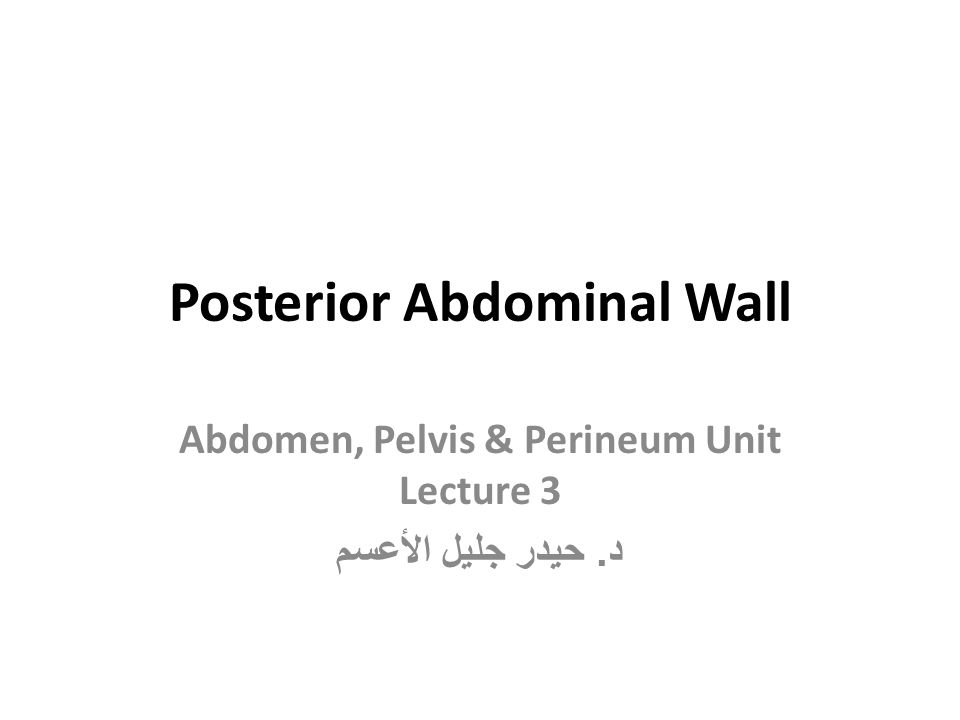 Posterior Abdominal Wall A.Bony structures: Five lumbar vertebrae and their intervertebral discs in the midline and the 12th ribs and upper part of the bony pelvis (ilium) laterally B.