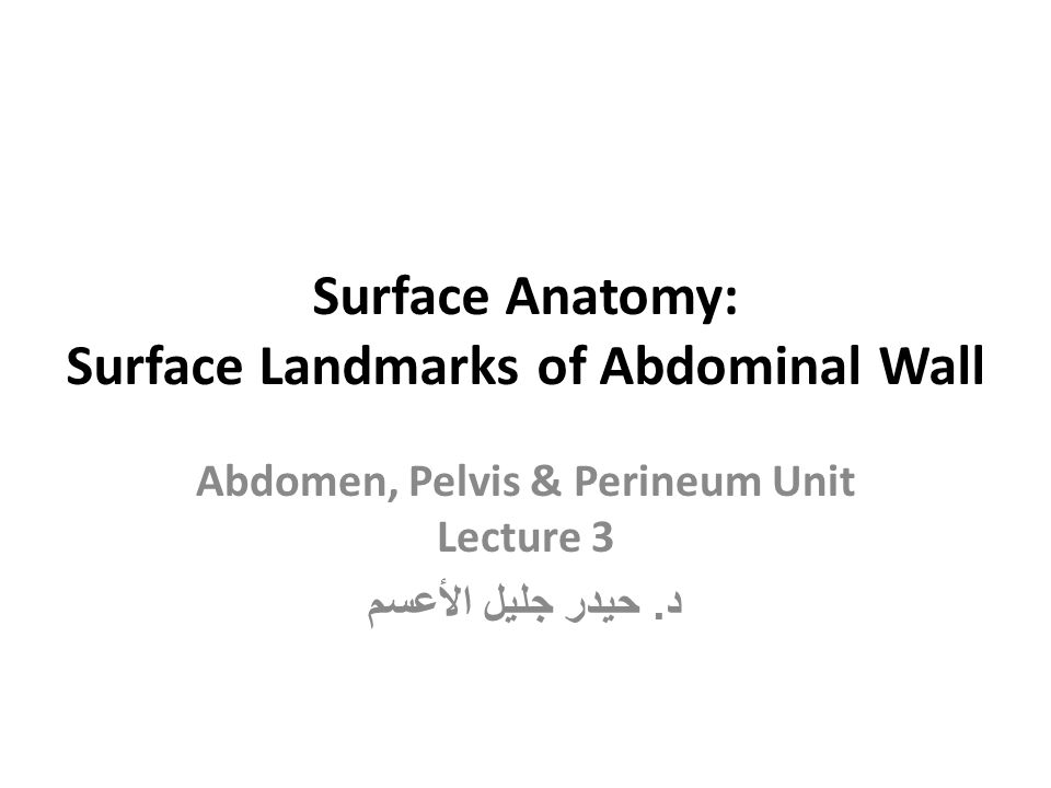 Surface Abdominal Landmarks Xiphoid Process: palpated in the depression where costal margins meet in the upper part of the anterior abdominal wall.