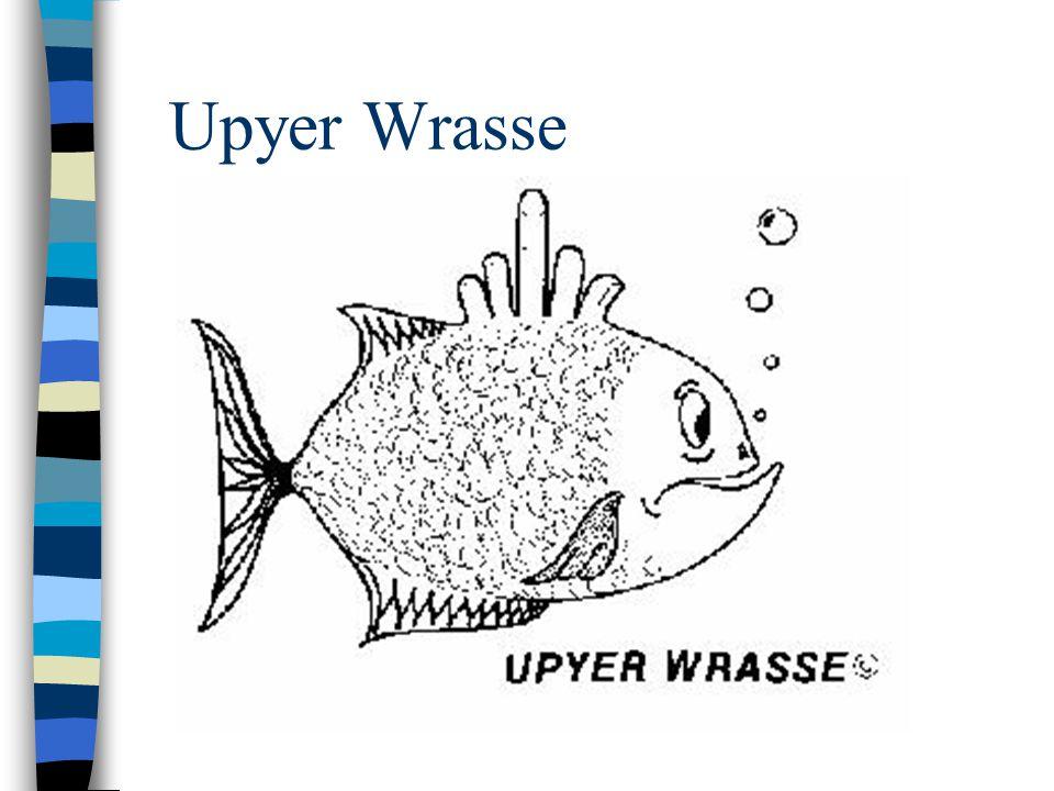 Upyer Wrasse