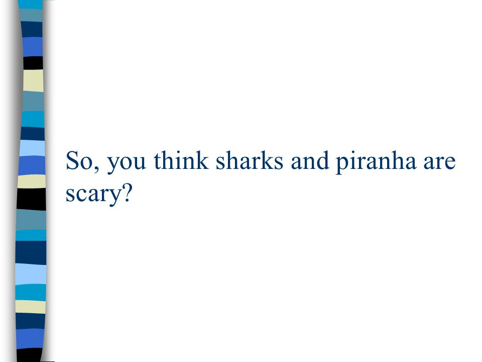 So, you think sharks and piranha are scary