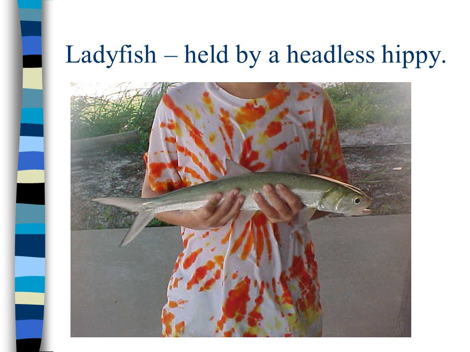Ladyfish – held by a headless hippy.