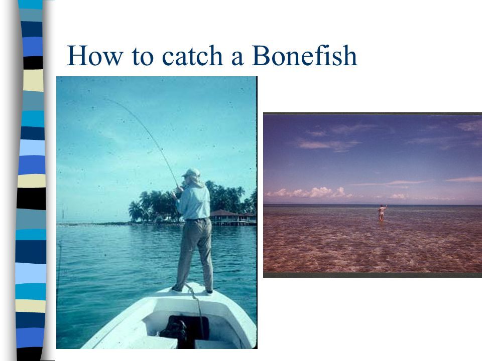 Happiness with a Bonefish