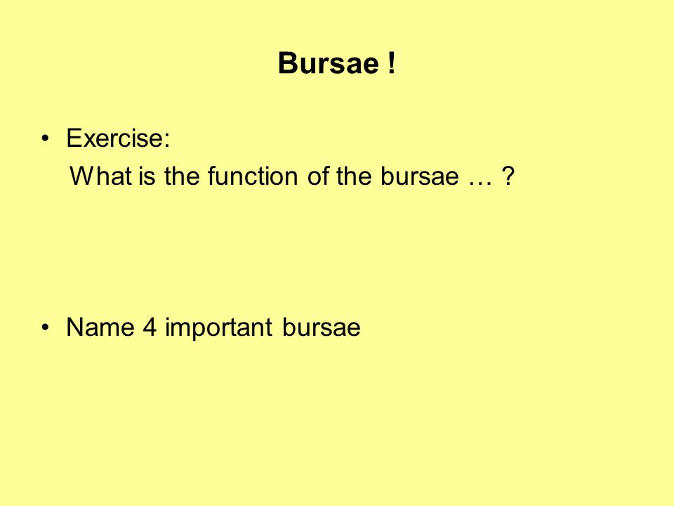Bursae ! Exercise: What is the function of the bursae … ? Name 4 important bursae