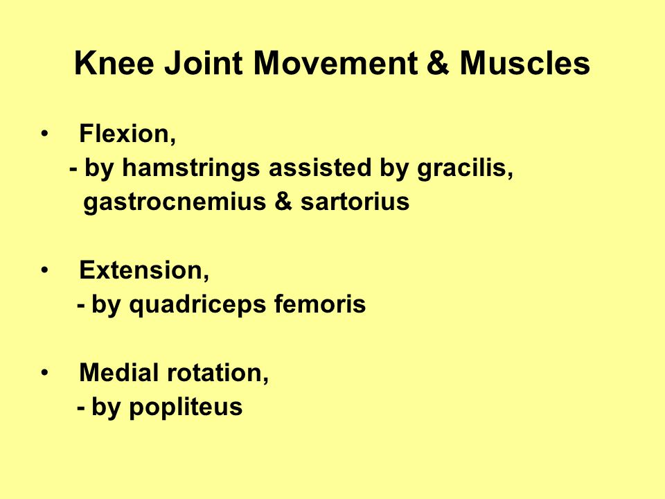 Knee Joint Movement & Muscles Flexion, - by hamstrings assisted by gracilis, gastrocnemius & sartorius Extension, - by quadriceps femoris Medial rotation, - by popliteus