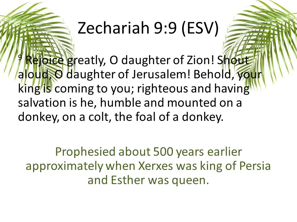 Zechariah 9:9 (ESV) 9 Rejoice greatly, O daughter of Zion.