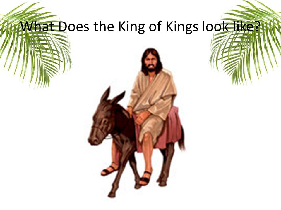What Does the King of Kings look like