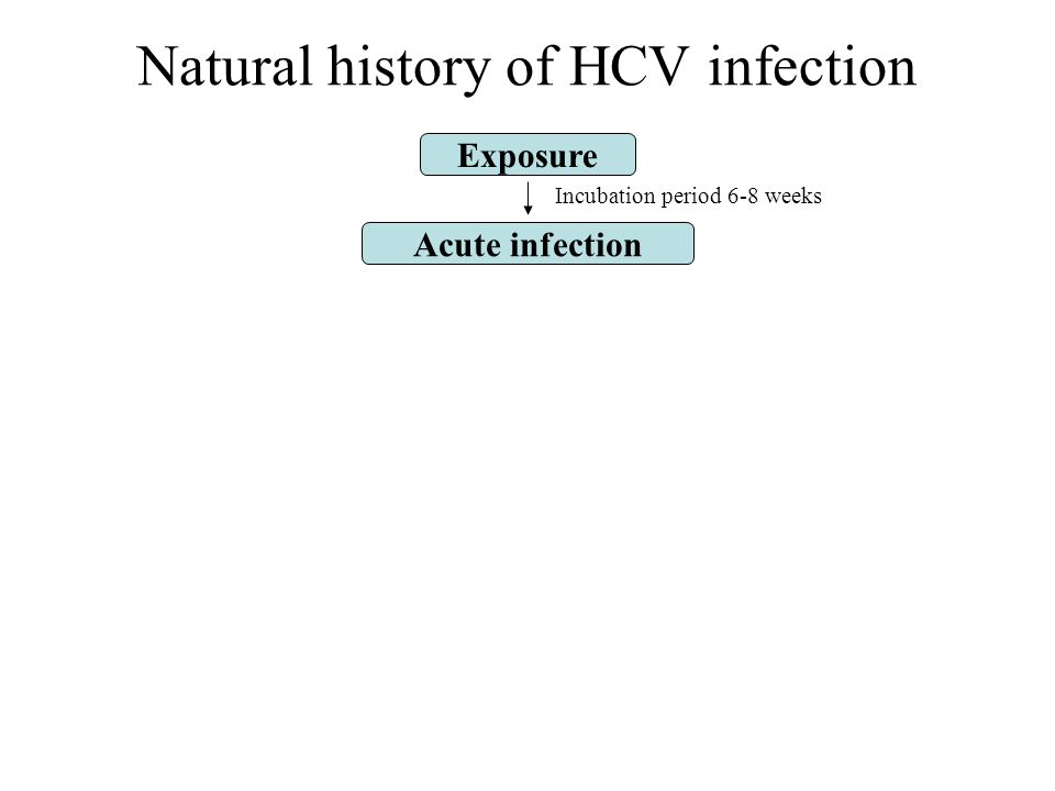 Exposure Acute infection Incubation period 6-8 weeks Natural history of HCV infection