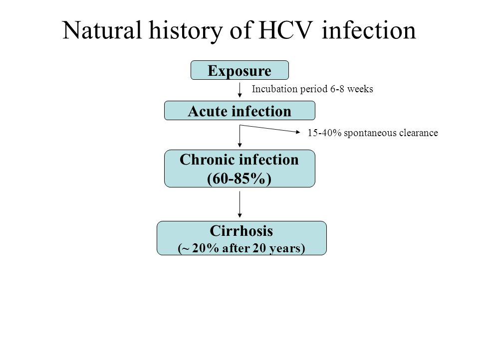 Exposure Acute infection Chronic infection (60-85%) Cirrhosis (~ 20% after 20 years) Incubation period 6-8 weeks 15-40% spontaneous clearance Natural history of HCV infection